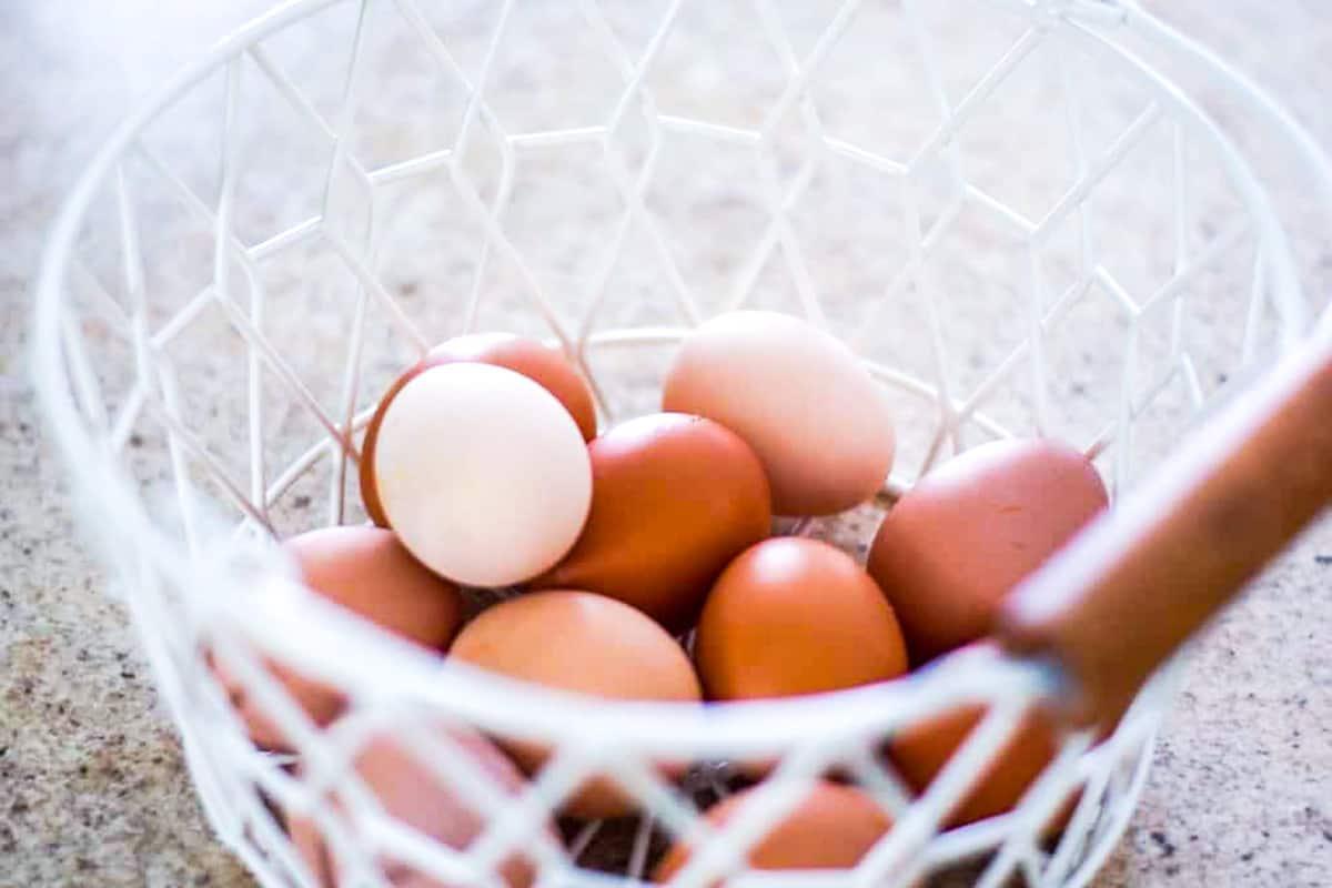 white wire basket of farm fresh eggs
