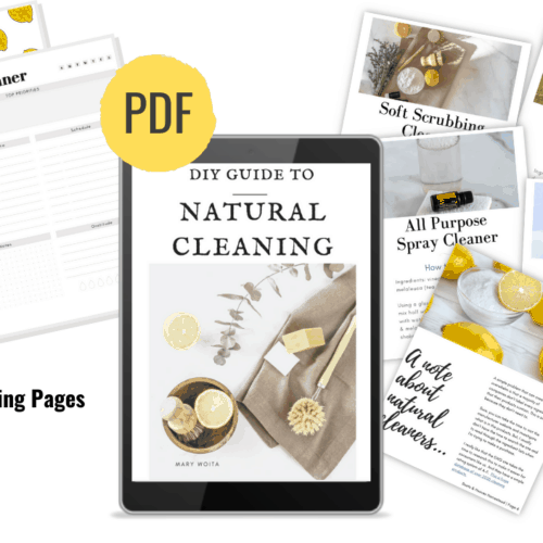 e-reader with natural cleaning recipes