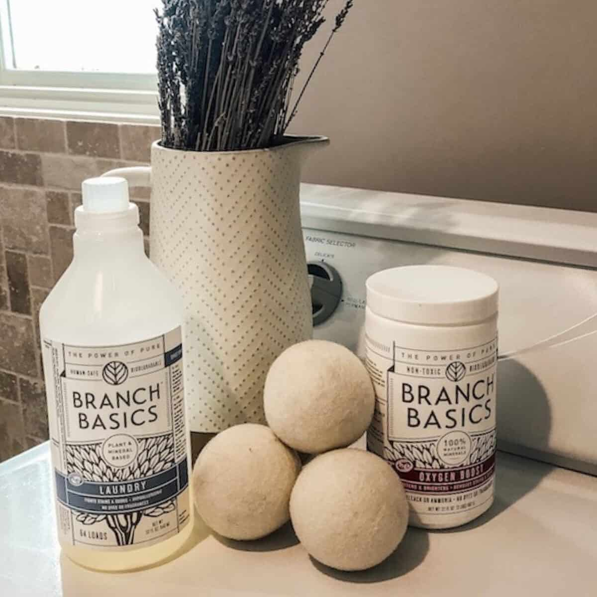 laundry soap and oxygen booster in laundry room