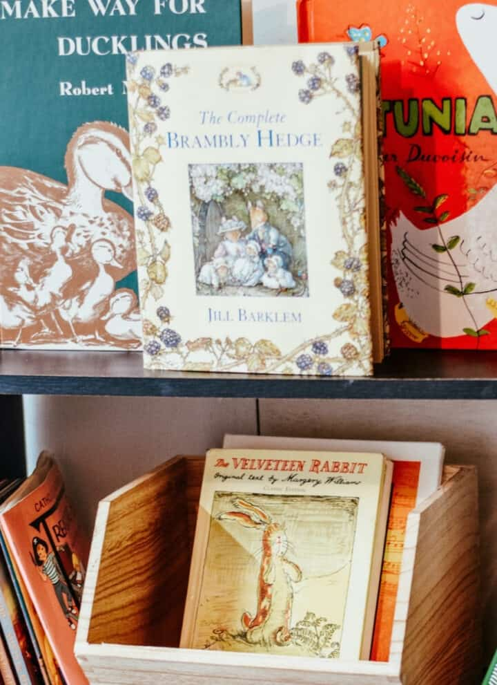 display of picture books on book shelf